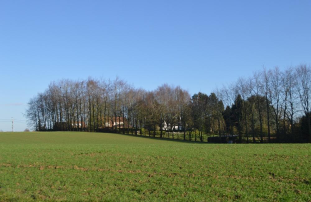 Bluemarineimmo Agence Wavre Vente terrain Lasne Plancenoit